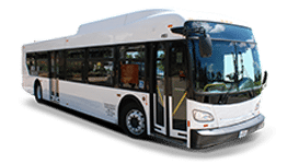 28 to 45 Passenger Transit Bus